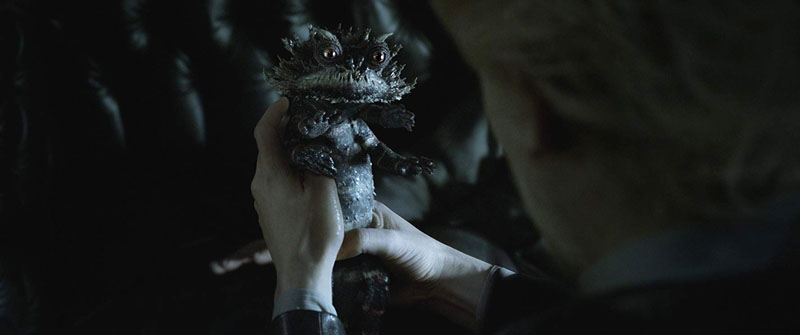 《怪獸與葛林戴華德的罪行》5個讓電影更有趣的幕後花絮